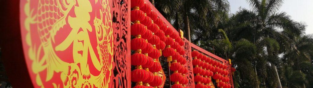 Signe Astrologique Chinois Le Dragon Puissant Et Agressif